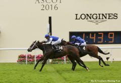 Tepin's victory at Royal Ascot this week provided one of the top moments of the racing season so far
