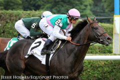 Is Flintshire a cold single or a play against in the Sword Dancer?