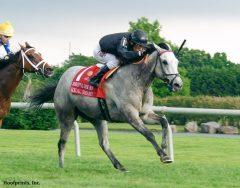 Real Smart winning The Robert Dick Memorial Stakes at Delaware Park on 7/9/16