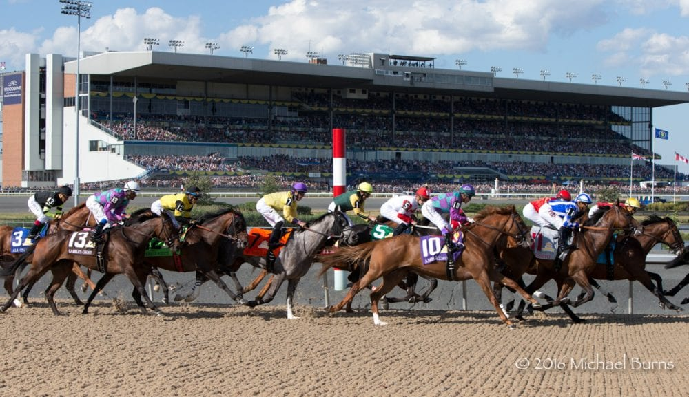 Woodbine Makes Waves - Without Rocking The Boat, Of Course