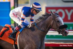 Enola Gray sets a stakes record in the Fleet Treat Stakes
