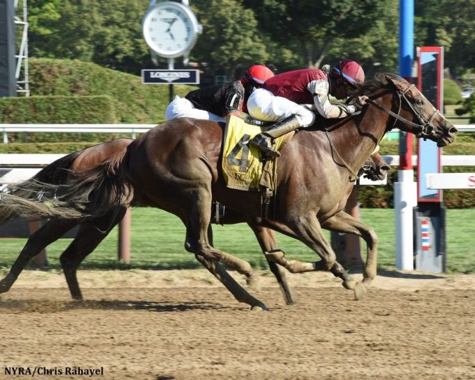 Haveyougoneaway edges Paulassilverlining to win the G2 Honorable Miss Stakes
