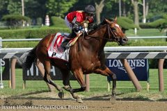 A. P. Indian (Indian Charlie) and jockey Joe Bravo win the Forego (Gr I) at Saratoga. A.P. Indian is out of a mare by A.P. Indy
