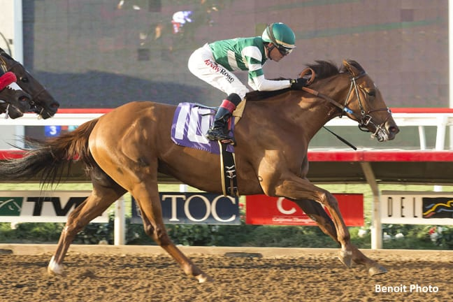 Accelerate Steps Up In Shared Belief Stakes Horse Racing