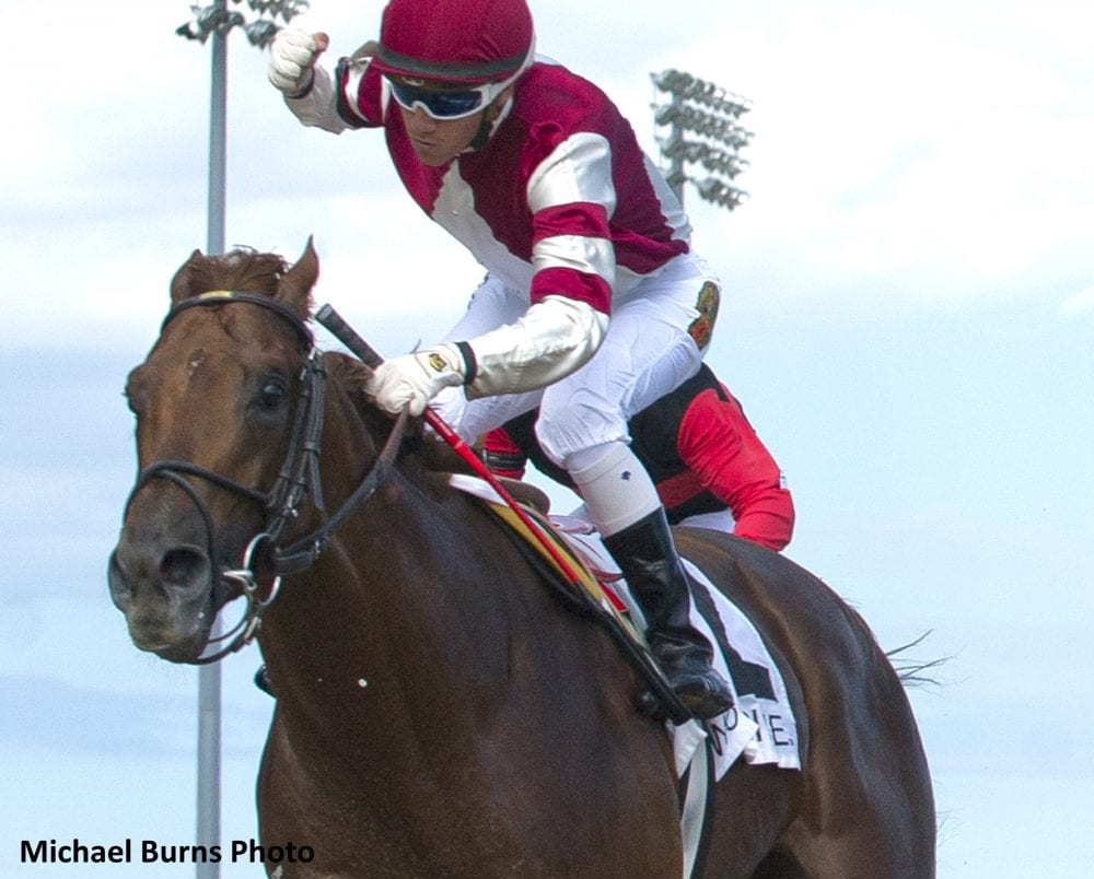 Luis Contreras guides Breaking Lucky to victory in the $150,000 dollar Seagram Cup Stakes Grade III at Woodbine Racetrack.