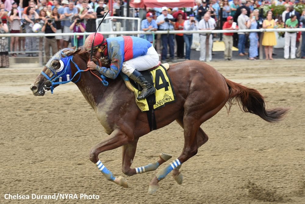 Gunnevera, winner of the Saratoga Special in August, has been installed as the 5-2 favorite in the Jackpot