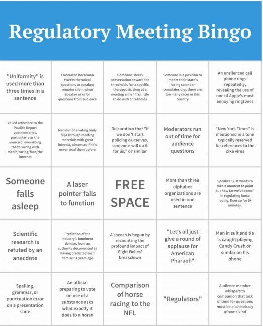 Regulatory Meeting Bingo