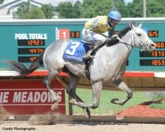 Han Sense, a 2yo colt from Hansen's first crop, makes his career debut a winning one in taking the Iowa Cradle Stakes