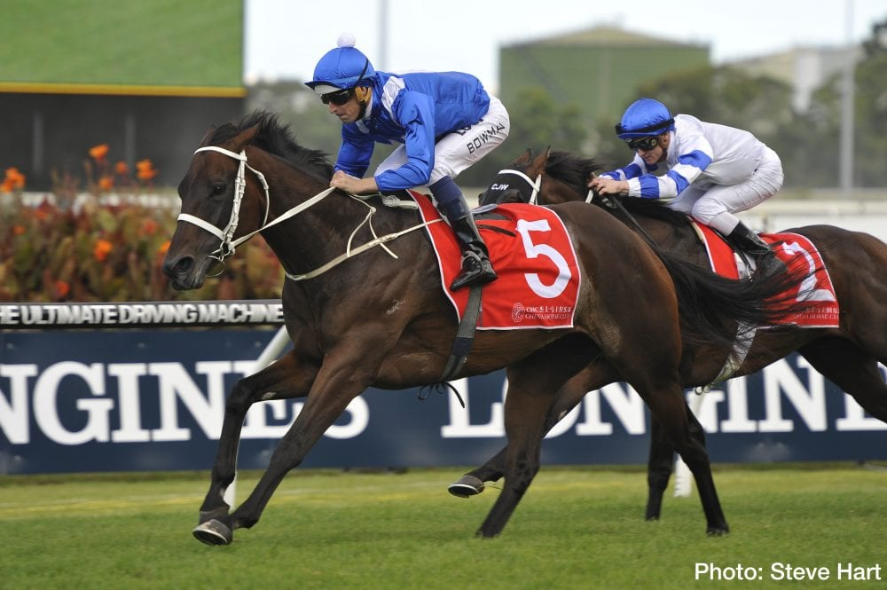 Australian Horse of the Year Winx notched her 14th straight victory in the G2 Apollo Stakes