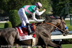 Arrogate (Unbridled's Song) and jockey Mike Smith win the Travers (Gr I) at Saratoga Racecourse