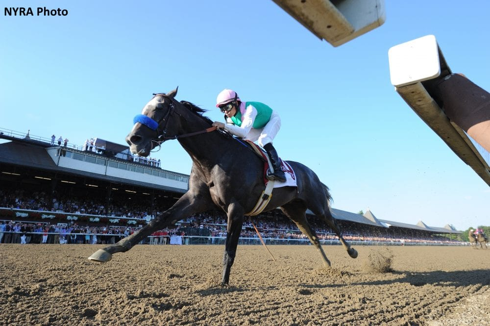 Racing For The Eclipse: What Does Arrogate Have To Do? - Horse ...