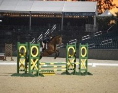 More than a hundred Thoroughbreds competed in the New Vocations show