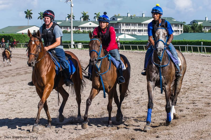 Vitali Barred From Entry Box At Tampa Bay Downs, Hunter Ordered To