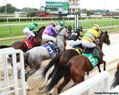 Breaking from the gate in the Locust Grove Stakes