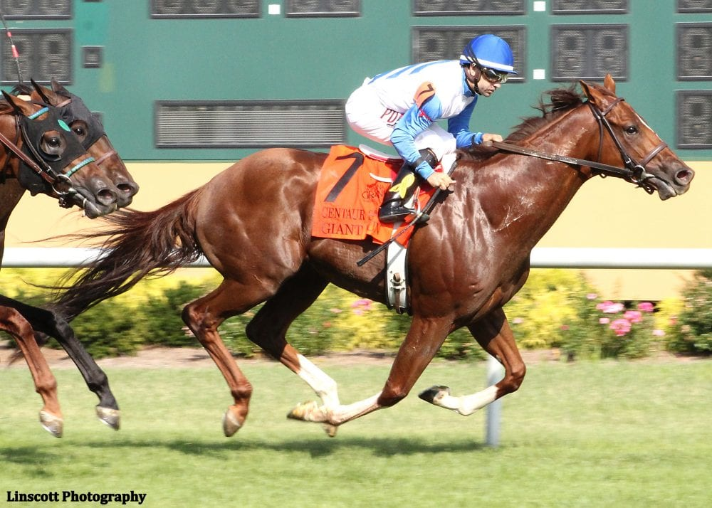 Giant Run was much the best in the $200,000 Centaur Stakes at Indiana Grand
