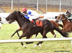 Blacktype wins the Commonwealth Turf Cup