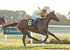 Lull takes the Kentucky Downs Juvenile Fillies Stakes