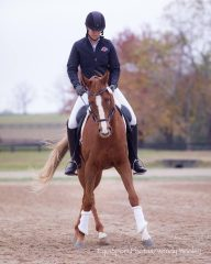 Emily Brollier-Curtis and Dancing Commander, owned by EquiSport Photo's Wendy Wooley, prepare to compete in dressage.