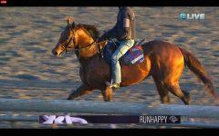 Runhappy at Santa Anita