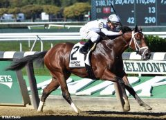 Theory rolls to victory in the G3 Futurity Stakes