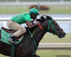 Undefeated Three Rules breezed 5 furlongs at Gulfstream Oct. 28