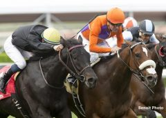 Spendthrift Farm's Cover Song and jockey Kent Desormeaux, right, overpower Danilovna (Flavien Prat), left, to win the Grade III, $100,000 Autumn Miss Stakes, Saturday, October 29, 2016 at Santa Anita Park