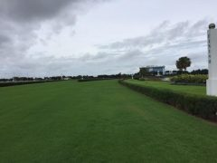 Gulfstream Park West turf course