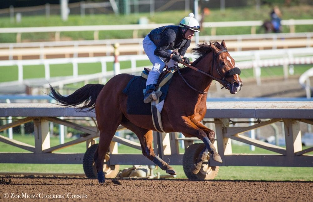 Masochistic Fires Bullet For Sprint Friday Horse Racing