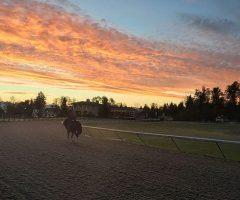 Pegasus training center in Redmond, WA (photo via website)