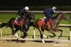 Tepin (outside) and stablemate Keep Quiet breeze at Churchill on Oct. 22