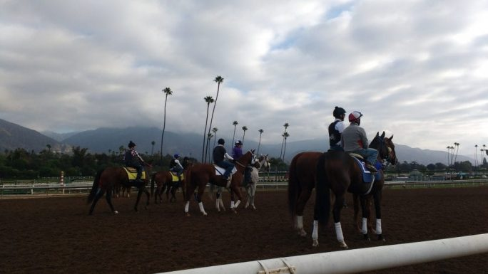 Breeders Cup Photo Blog Presented By Tvg The Young