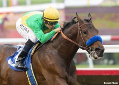 Cheyenne Stable's Mastery and jockey Mike Smith win the Grade 3 Bob Hope Stakes