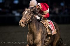 McCraken (Ghostzapper) wins the Kentucky Jockey Club Gold Cup at Churchill Downs