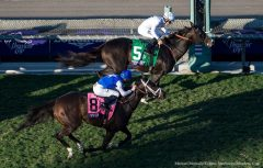 Tourist prevails by a half-length over Tepin in the Breeders' Cup Mile