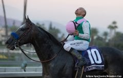 Arrogate and Mike Smith pause following their victory in the Breeders' Cup Classic