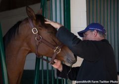 Beholder and Spendthrift's Ned Toffey share a moment after her arrival