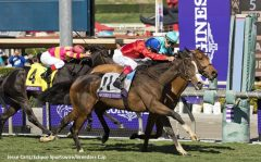 Queen's Trust, ridden by Lanfranco Dettori wins the Breeders' Cup Filly & Mare Turf over Lady Eli. (Photo by Jesse Caris/Eclipse Sportswire/Breeders Cup)