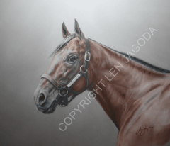 Limited-edition prints of American Pharoah are being sold to benefit the Georgia Horse Racing Coalition