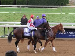 Milord escorts Songbird before the 2015 Breeders' Cup Juvenile Fillies at Keeneland