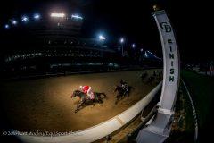 McCraken (Ghostzapper) wins the Kentucky Jockey Club at Churchill Downs on 11.26.2016.