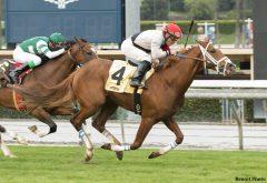 VENDING MACHINE (Norbert Arroyo, Jr.) takes the Eddie Logan Stakes in his turf debut.