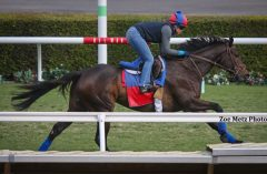 Miss Temple City works at Del Mar