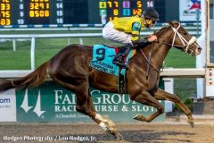 The Dallas Stewart bred, owned and trained Saint's Fan won the Louisiana Champions Day Juvenile with ease.