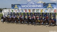 They're off at Woodbine
