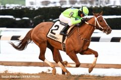 War Story won the Queens County Stakes for trainer Mario Serey Jr., who is facing possible sanctions for four clenbuterol positives in early December