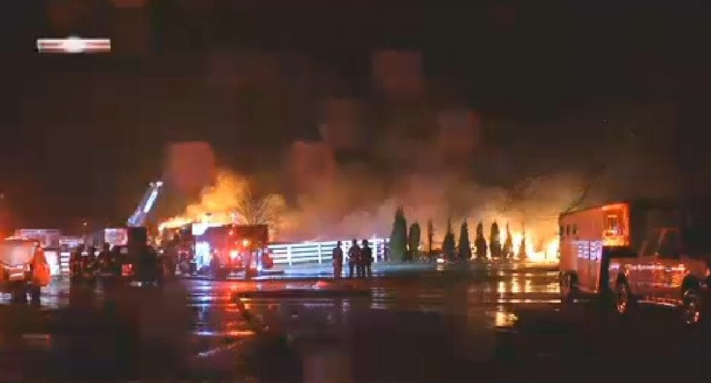 Lightning May Have Sparked Kentucky Barn Fire That Killed 23 Thoroughbred Horses