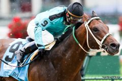 Atta Boy Roy, winning the G2 Churchill Downs Stakes for Lund in 2010