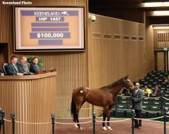 Dixie Victory, Hip 1457, topped the Thursday session of the KEE January sale