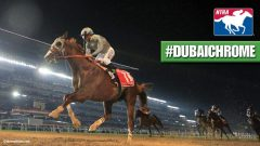 California Chrome's  Dubai World Cup victory was voted the NTRA Moment of the Year for 2016