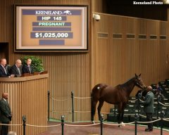 Siren Serenade, in foal to Tapit, was the January sale topper at $1,025,000